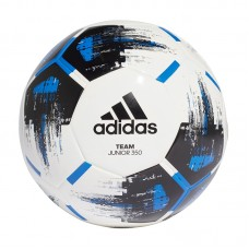 adidas Team Junior 350g 573