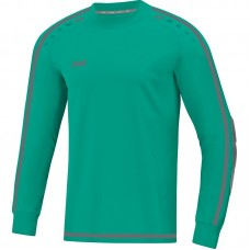 GK jersey Striker 2.0 turquoise-anthracite Junior